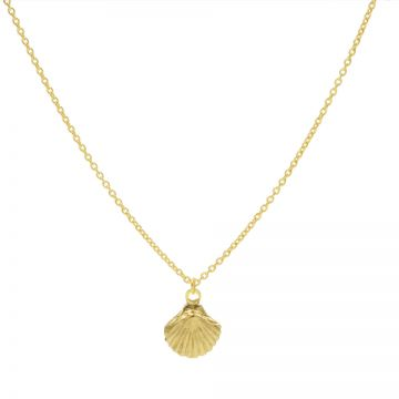 Necklace Shell Goldplated 50-57CM