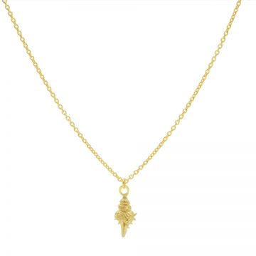 Necklace Shell 2 Goldplated 50-57CM