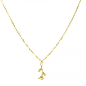 Necklace Rose Goldplated