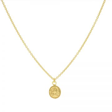 Necklace Coin Goldplated 50-57CM